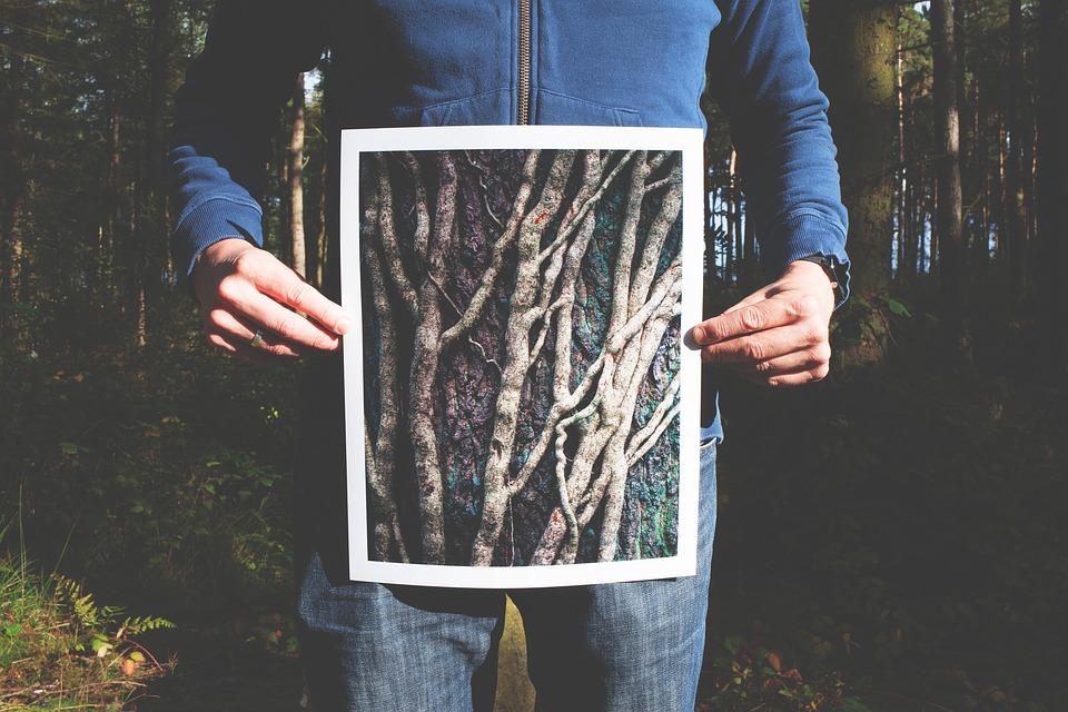 תמונות להדפסה על קנבס